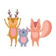 cute deer koala and squirrel animals cartoon character