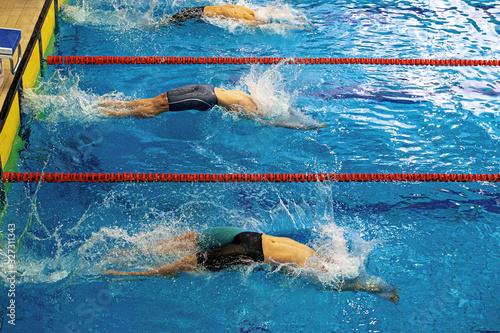 start athletes swimmers backstroke swim in swimming race Wallpaper Mural