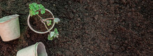 Land And Gardening Supplies. G...