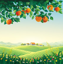Rural Landscape With A Village And A Branch Of An Apple Tree In The Foreground. Raster Illustration.
