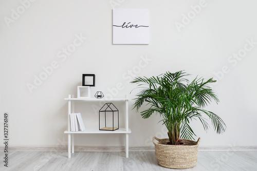 Fototapeta Interior of modern room with shelf unit and houseplant obraz na płótnie