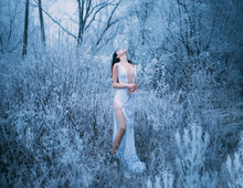 Lady Enjoy Silence Fantastic Winter Forest Head Is Thrown Back, Holding Frozen Branch In Hand. Girl Brunette Long Hair In White Sexy Dress, Naked Leg. Backdrop Tree Trunk Twig Grass Covered Frost Fog