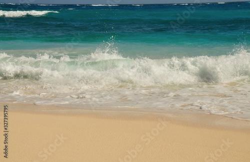 Waves wash ashore Wallpaper Mural