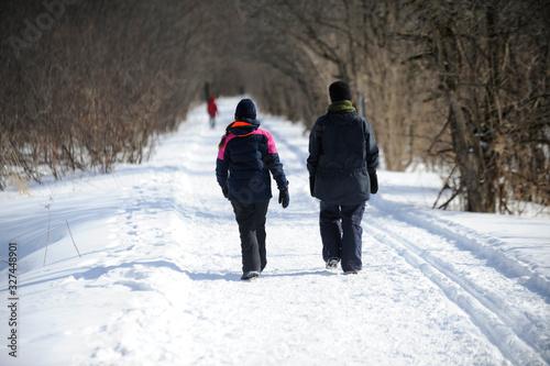 Photo promenade en hiver
