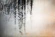 canvas print picture - Grunge black and white abstract distress background or texture.