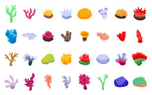 Coral Icons Set. Isometric Set Of Coral Vector Icons For Web Design Isolated On White Background