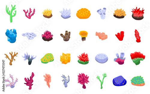 Coral icons set Wallpaper Mural
