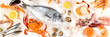 Fish and seafood panoramic top shot. Sea bream, crab, sardines, scallops, shrimps on a white background