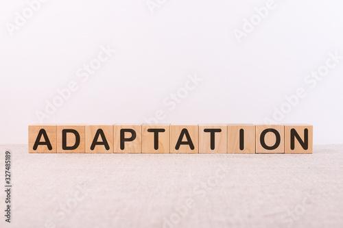 Photo Word ADAPTATION is written on wooden blocks on a light background