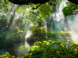 Tropical jungle with river and sun  beam  and foggy in the garden