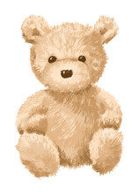 Brown Teddy Bear On White Back...