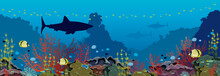 Underwater Sea - Corals, Shark...