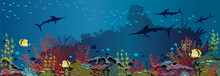 Underwater Sea - Coral Reef And Fishes