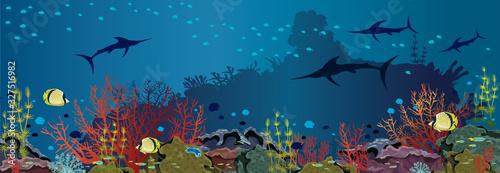 Fotografia Underwater sea - Coral reef and fishes