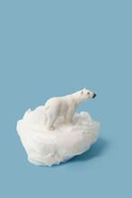 White Polar Bear On Plastic Ba...