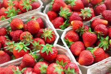 Red Ripe Juice Fresh Organic Strawberry Packed In Eco Friendly Paper Cardboard Boxed At Wholesale Storage Market For Transportation And Shipping Export And Import. Nutritious Healthy Berry Diet Food