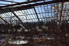 Old Abandoned Greenhouse In The Garden