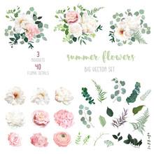 Blush Pink Rose And Sage Green...