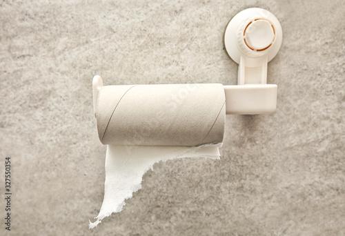 Fototapeta empty toilet paper roll on the on the holder