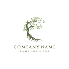 Tree And Roots Logo Design Vec...
