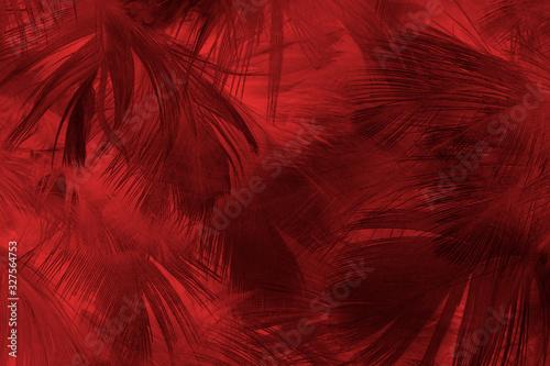 Beautiful dark red maroon feather pattern texture background - 327564753