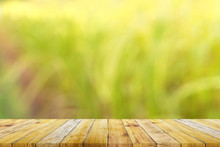 Shelf Of Brown Wood Plank Board With Blurred Green Nature Background.