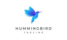 Hummingbird Logo - Colorful Bird Logo Art Design