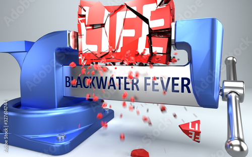 Blackwater fever can ruin and destruct life - symbolized by word Blackwater feve Canvas Print
