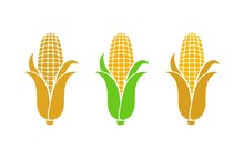 Corn Logo. Isolated Corn On Wh...
