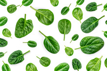 Spinach Pattern. Creative Layo...