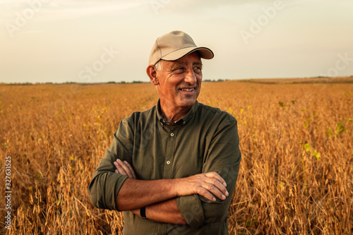 Obraz Portrait of senior farmer standing in soybean field examining crop at sunset. - fototapety do salonu