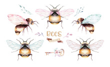 Set Of Watercolor Bright Bees....