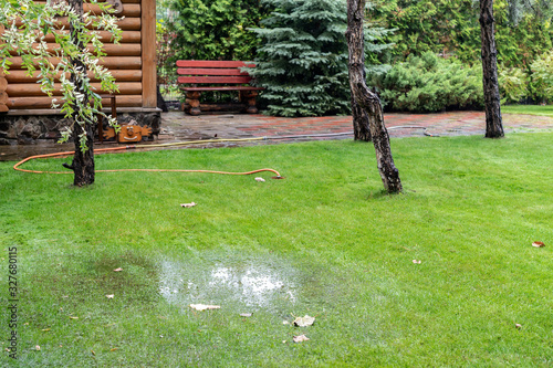 Garden bushes, tree and green grass lawn covered with water due to snow melting thaw and flash high water at spring Fototapet