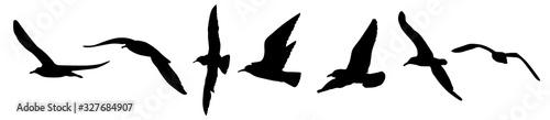 Photo A seagulls silhouette