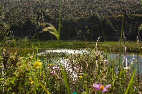 Lake at the dam of Rapentosa in Attica, Greece Canvas Print
