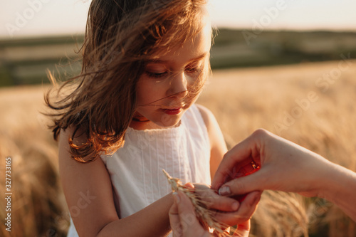 Fotografía Charming red haired caucasian girl holding some wheat seeds posing in a field ne