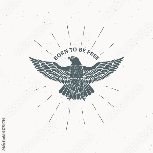 Fotografie, Obraz Color illustration of an eagle in the rays and text on a background with a grunge texture