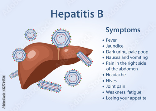 Obraz Hepatitis liver. Symptoms of hepatitis B as text. Vector illustration in flat style isolated on blue background. - fototapety do salonu