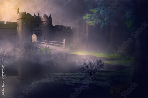 Fototapeta castle in fog obraz