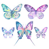 Watercolor butterflies isolated on white background. Big bright set. Abstract colorful illustration collection