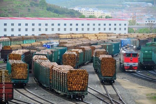 Fotomural Russian train carrying  logs entered the Suifenhe railway station,Heilongjiang p