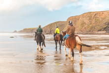 Horse Ride On The Beach In Wal...