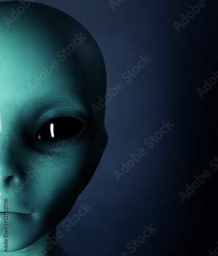 Alien,Woman from the outside world,3d rendering Canvas Print