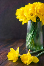 Two Yellow Daffodils Flower An...