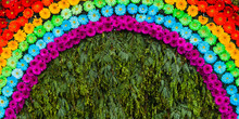 Floral Rainbow Made With Purpl...