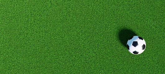 Soccer ball on a green grass as a panorama background, banner size