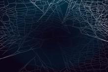 Spider Web Silhouette On Dark ...