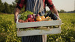canvas print picture - Hands young farmer is holding a box of organic vegetablesagriculture farm field harvest garden nutrition organic fresh portrait outdoor slow motion