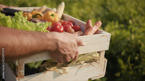 Hands young farmer is holding a box of organic vegetablesagriculture farm field harvest garden nutrition organic fresh portrait outdoor slow motion
