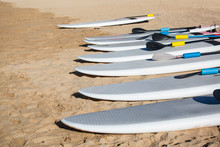 Row Of Stand Up Paddle Boards Resting On The Beach Ready To Rent. SUPs All In A Row Ready For The Ocean